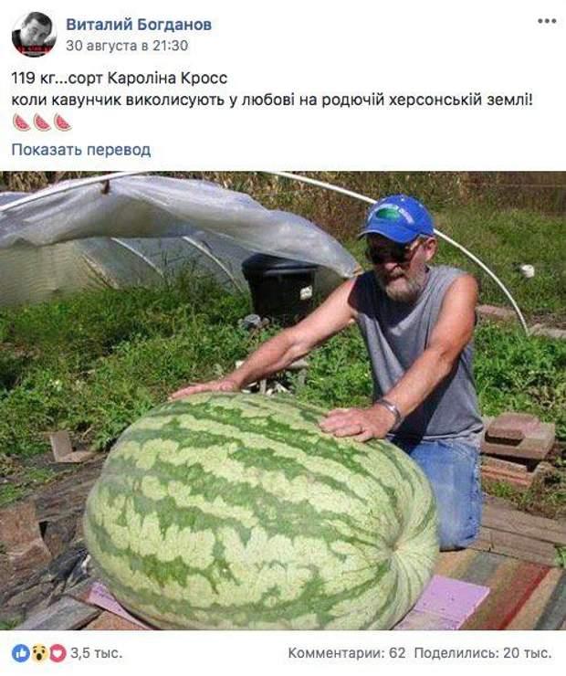 Кавун Херсон фейк