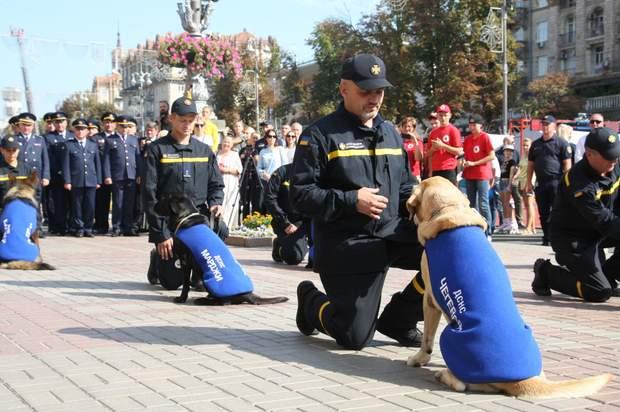 собаки нагородження
