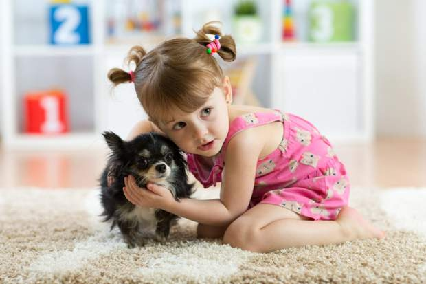 Чи корисні домашні улюбленці для дітей