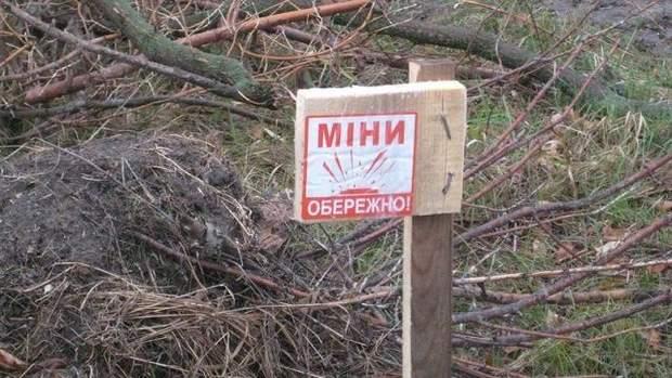 Міни – одна із небезпек, які чатують у лісах