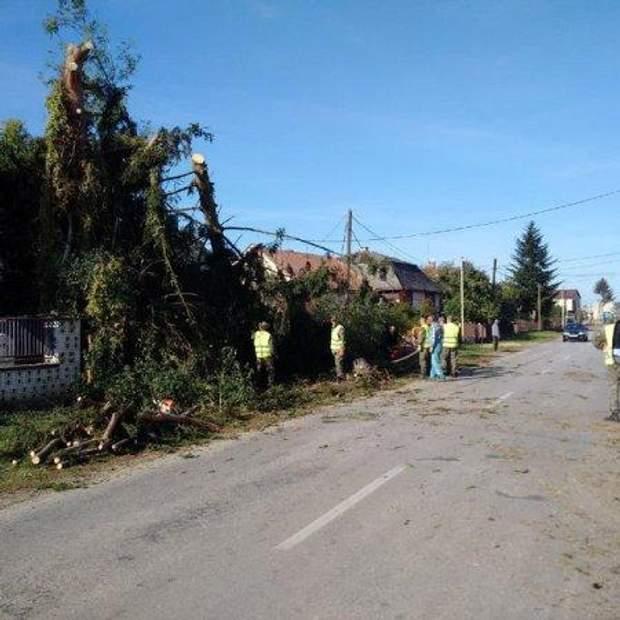 Буря торнадо ураган Закарпаття Словаччина