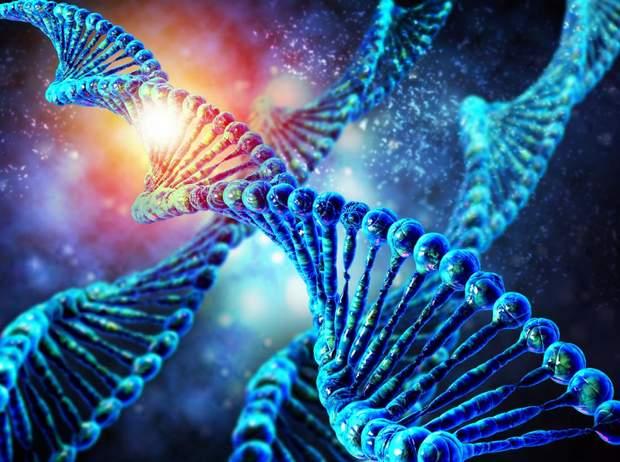 Науковці стали на крок ближче до редагування генів людини