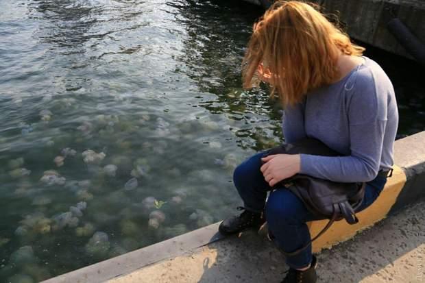 Одеса порт медузи екологія