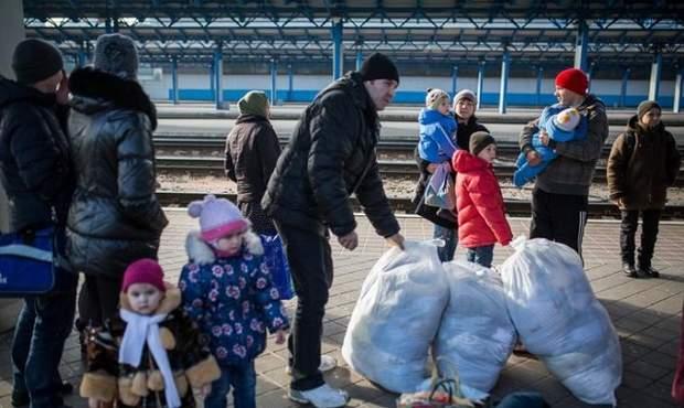 вибори президента України вимушені переселенці