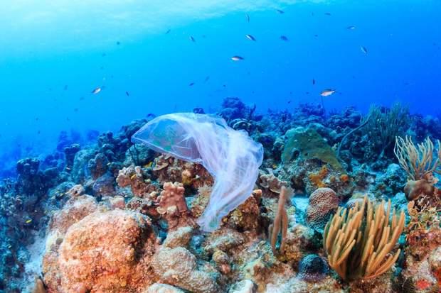 В океан потрапляє до 5% всього пластику