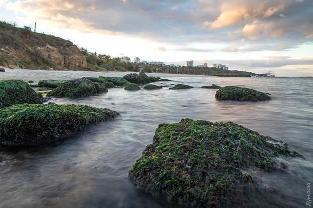 море відступило Одеса