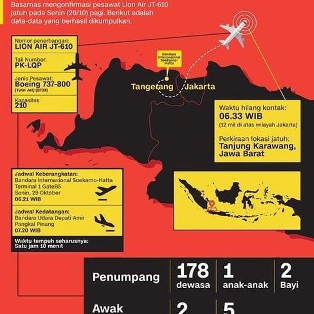 Боїнг 737 Індонезія катастрофа