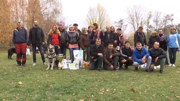 У змаганнях взяли участь  два десятки собак