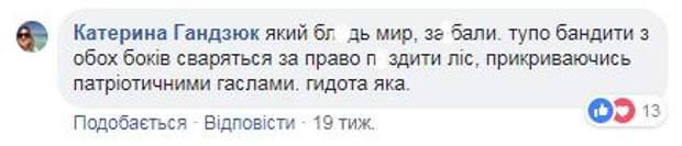 Коментар Катерини Гандзюк