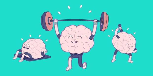Мозок, користь, поради, робота, працездатність, продуктивність
