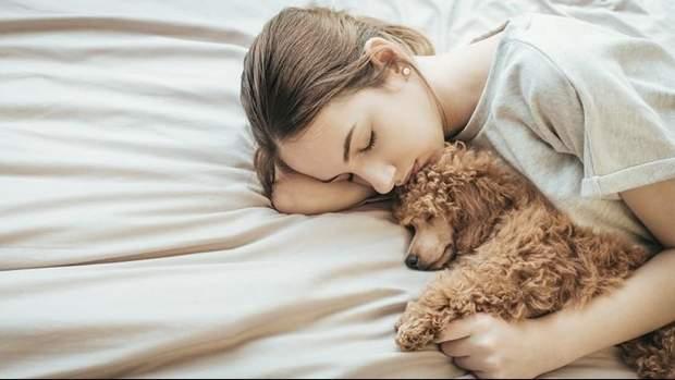 Вчені радять жінкам спати з собакою
