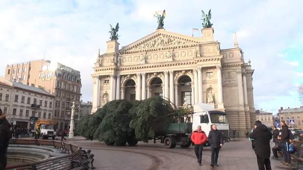 Ялинку привезли під Оперний театр