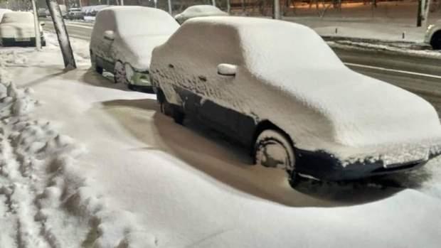 снігопад київ