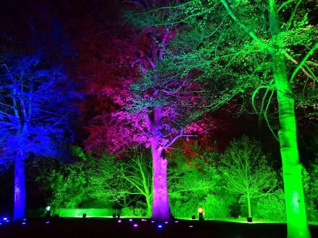 ботанічний сад лондон