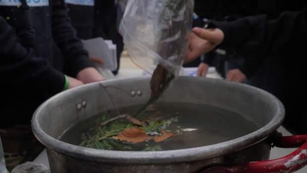 Голодомор їжа часів Голодомору геноцид