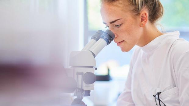 Вчені наблизилися до створення препарату від лихоманки з синдромом тромбоцитопенії