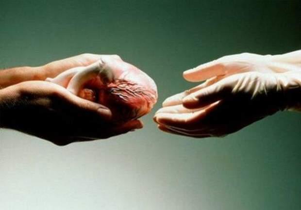 Закон про трансплантацію