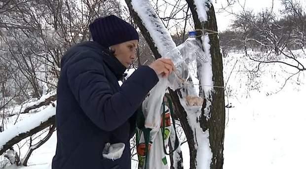 Волонтери допомагають диким птахам