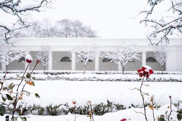 Мережу зачарували знімки засніженого Білого дому