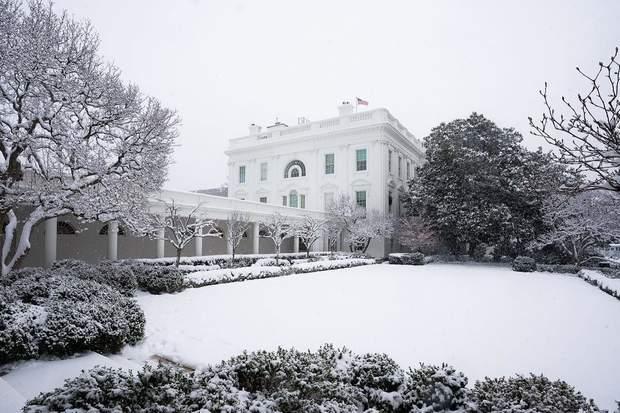 Знамениті сади Білого дому