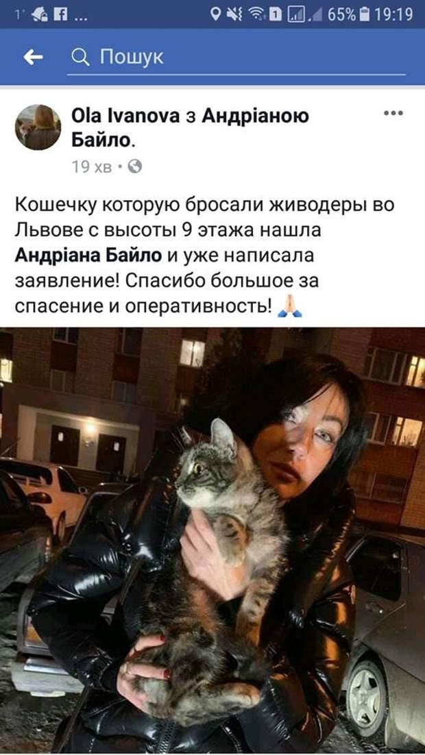 кіт Львів знущання над котом