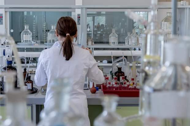 Вчені змогли пересадити пам'ять між слимаками