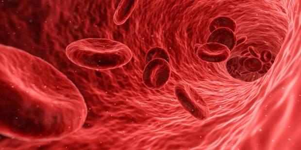 Відновлення клітин