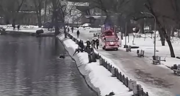 дніпро собака тонула рятувальники порятунок