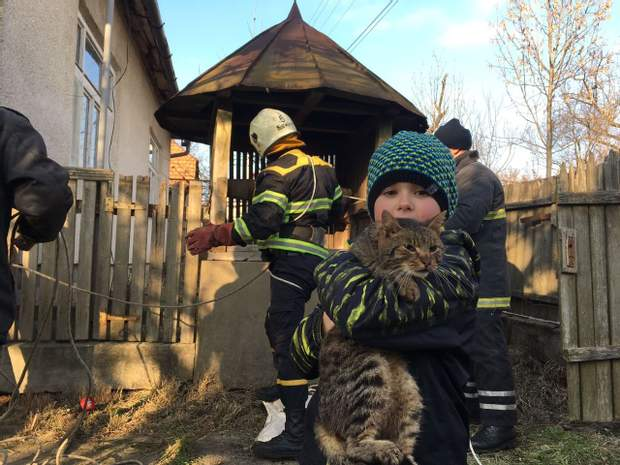 Барсік, кіт, Закарпаття, ДСНС, порятунок
