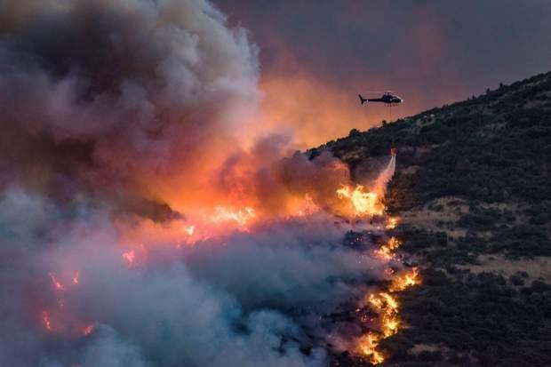 Лісова пожежа у Новій Зеландії