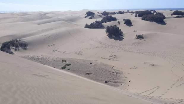 Малюнки на піску руйнують піщані дюни