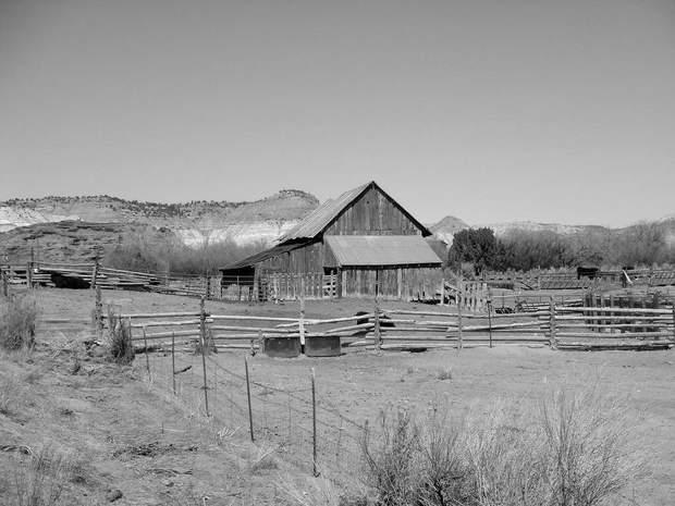 Ферми на Дикому Заході