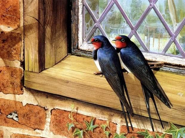7 березня прилітають пташки