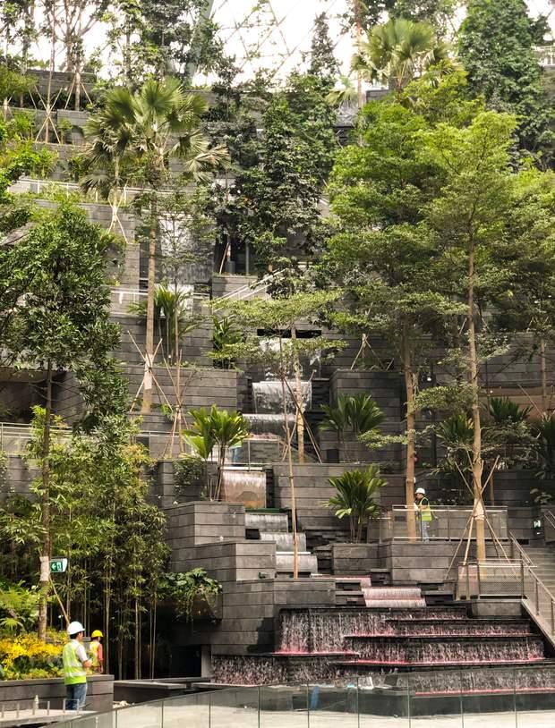 водоспад аеропорт Сінгапур