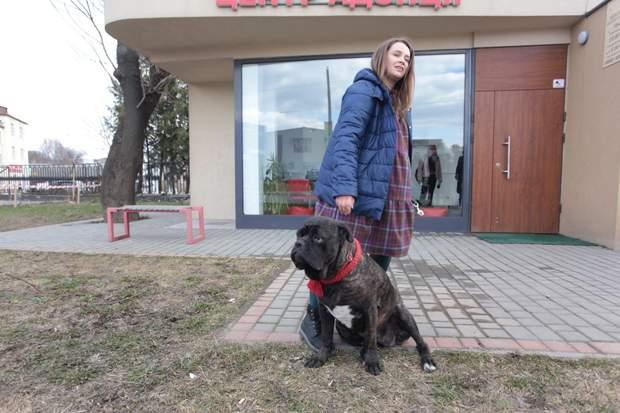 Собака Боніта першою стала донорем крові