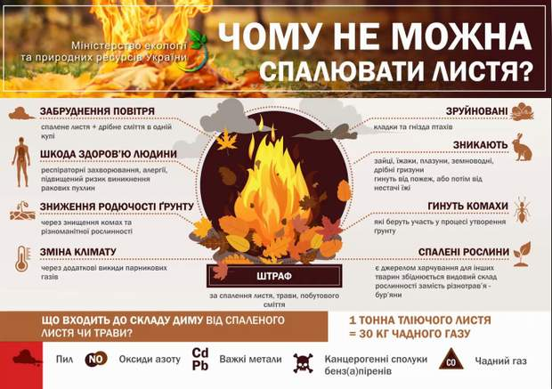 спалювання листя