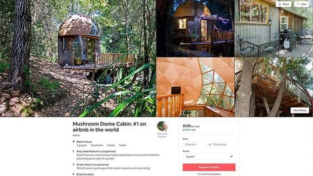 будинок гриб Сан-Франциско Airbnb