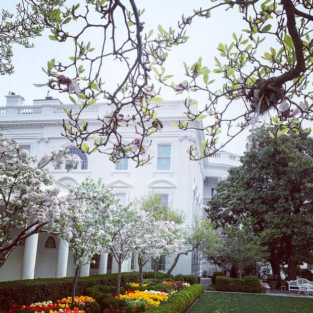 Іванка Трамп показала красу Білого дому