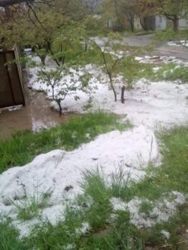 Сніг Україна травень погода негода Чернівці