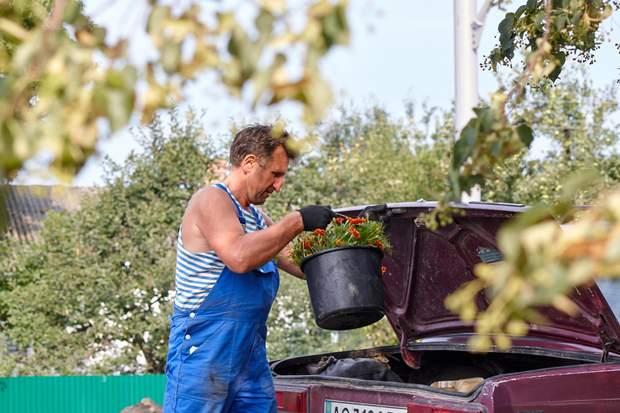 Соняшний Чорнобривець заквітчує Україну