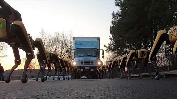 """""""Чотирилапі"""" роботи Boston Dynamics потягли вантажівку: відео"""