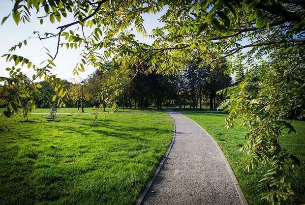 Частіше гуляйте в парках