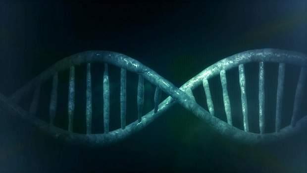 Погане виховання руйнує ДНК дітей
