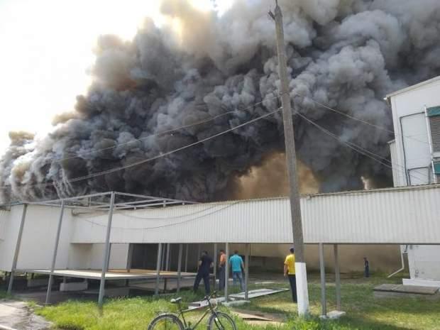 пожежа васильків птахофабрика