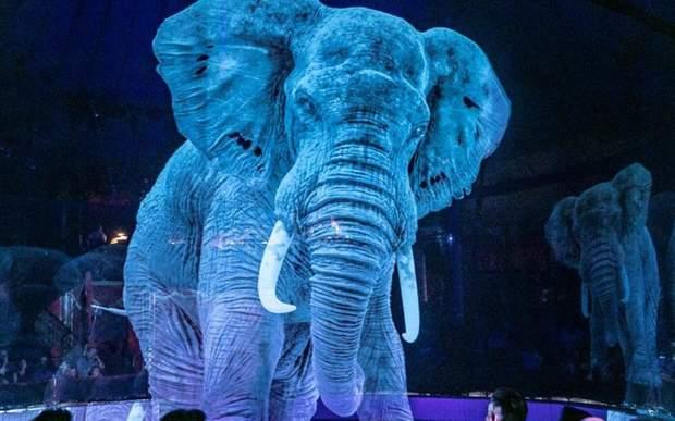 Глядачі нового циркового шоу залишились під враженнням
