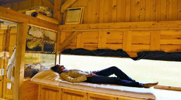 Людям пропонують провести кілька годин з комахами в одному приміщенні