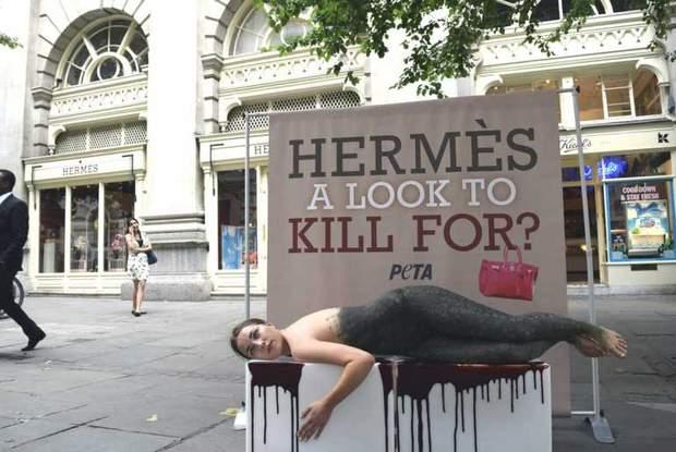 Активысти проти вбивства тварин / veganstvo.info