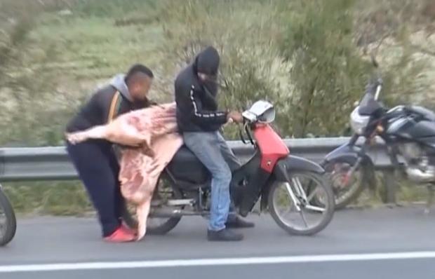 аргентина дтп свині крадіжка