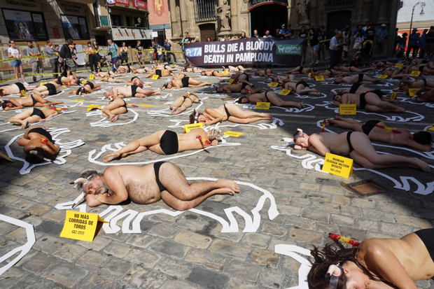 Протести за те, аби влада скасувала бої биків
