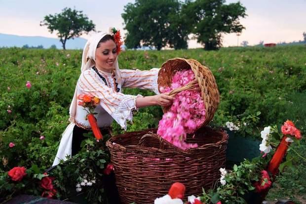 болгарія долина троянд